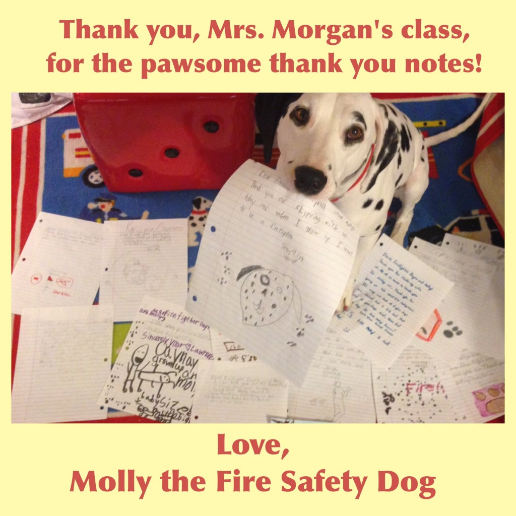 molly fire dog